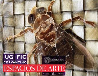 LA UG EN EL FIC. ESPACIOS DE ARTE: XLIII FESTIVAL INTERNACIONAL CERVANTINO